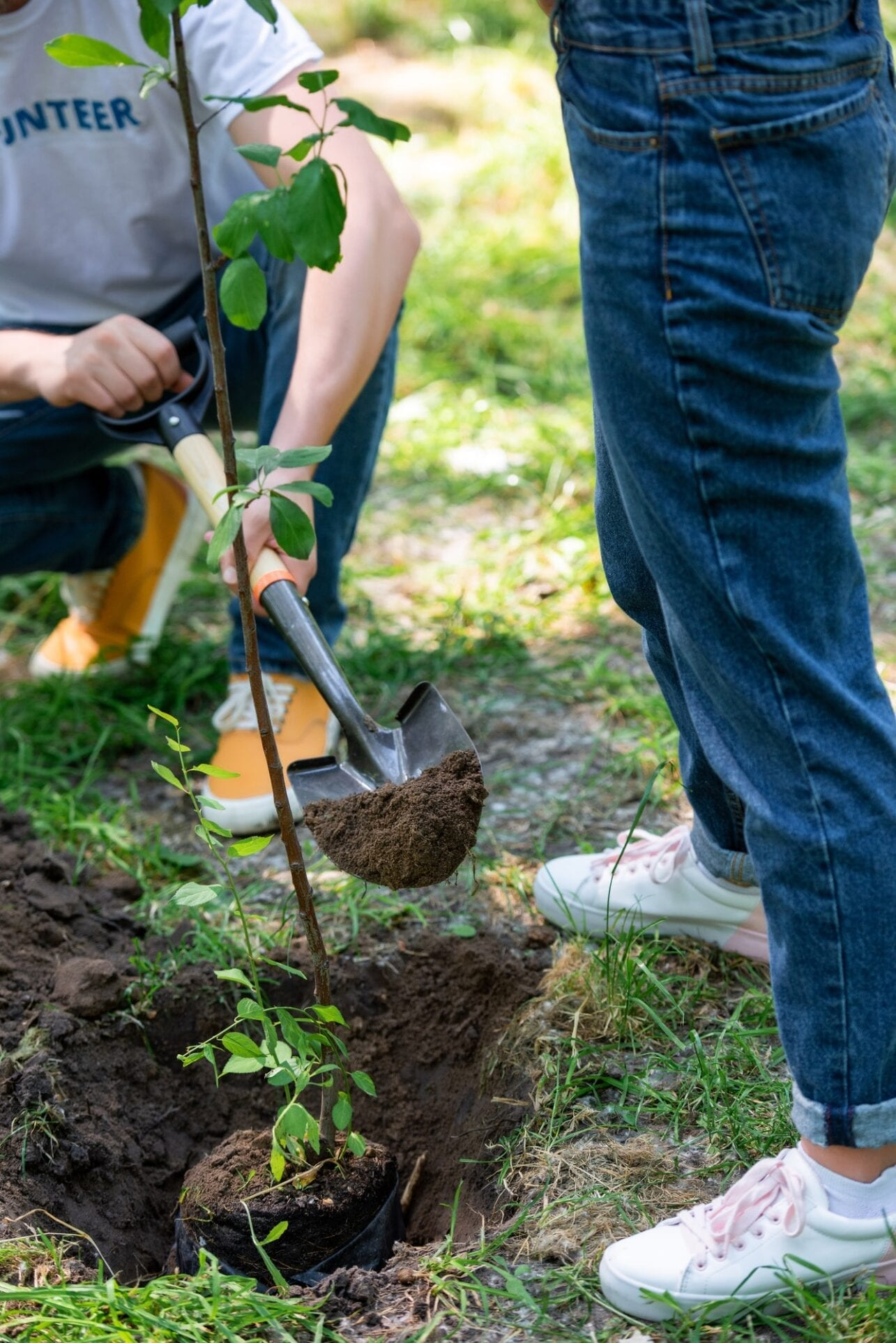 cropped-view-of-couple-planting-tree-with-shovel.jpg